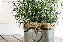 cement pots for a windowsill herb garden