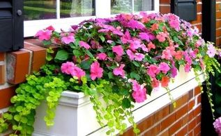 23 diy window boxes for flowers to add instant appeal to your home