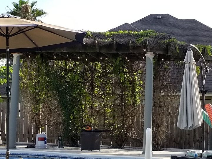 q help with ugly pergola