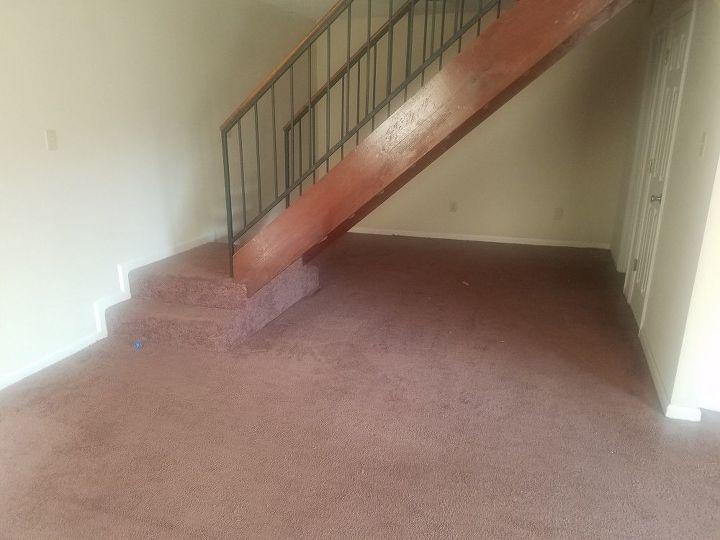 q brown carpet help