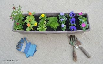 add the colors of the rainbow to your container garden