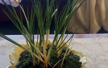 a sweet indoor decor crocus bowl