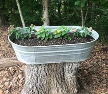 diy galvanized planter for tree stump
