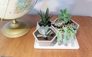 the art of succulents with thrift store finds