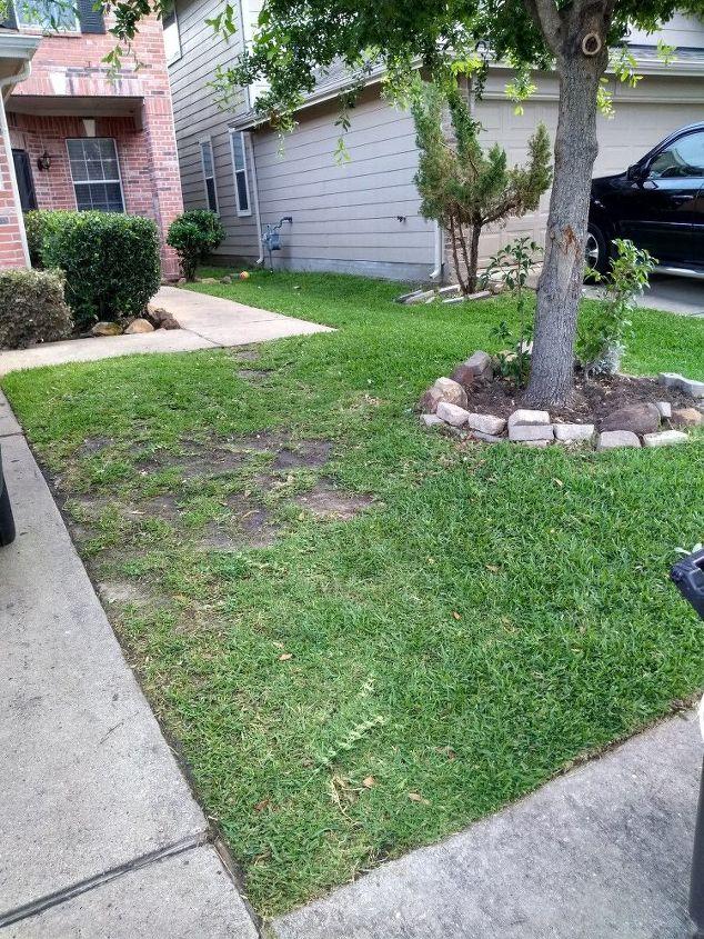 q gardening landscaping help