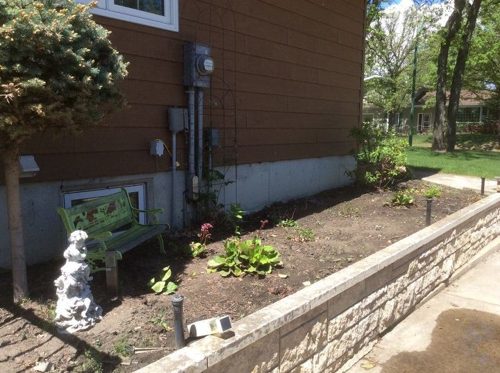 q east facing flower bed