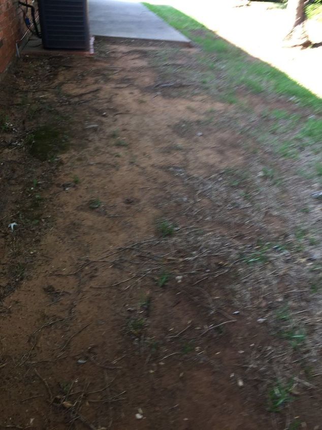 q create a walkway over my neighbor s tree roots
