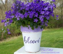how to make a bloom pot