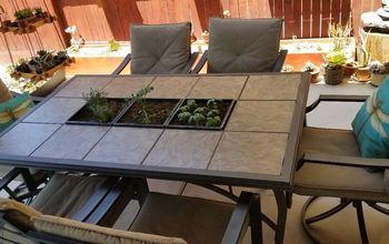 herb garden in patio table