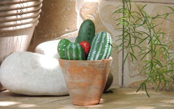 How to Craft Cacti That Rock!