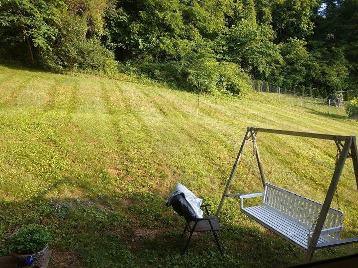 q how do i better utilize my backyard
