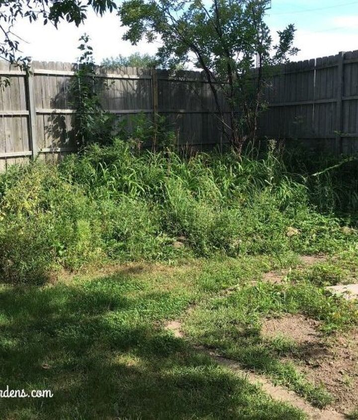 Before - The Weed Pit