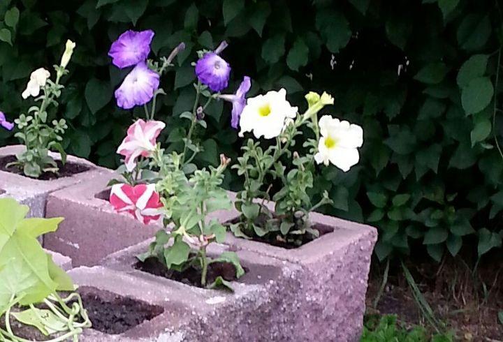 cinder block planter with shelves