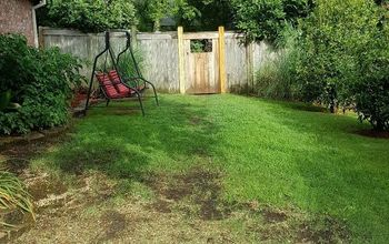 Suggestions for inexpensive walkways and patio in sideyard?