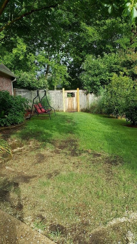 q suggestions for inexpensive walkways and patio in sideyard