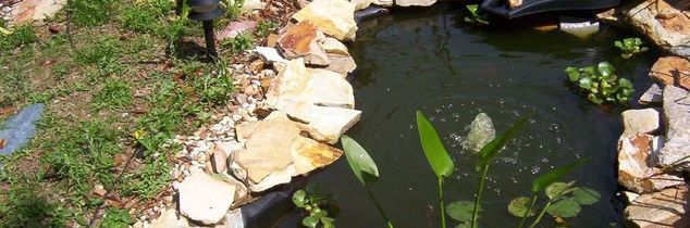 q what s the best way or product to use to clean and keep pond algae