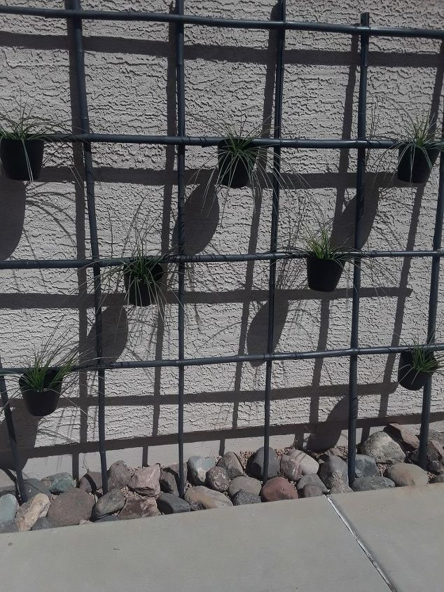 zen trellis for under 35