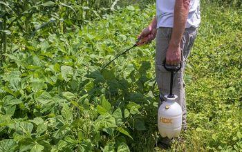 Homemade Hot Pepper Spray To Deter Garden Pests