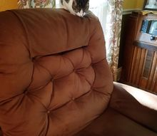 quickest way to clean furry furniture