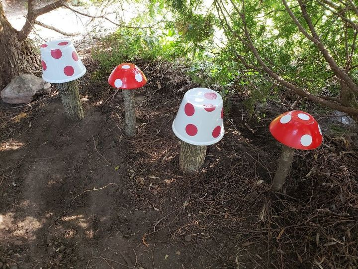 easy magical mushrooms for gardens yards