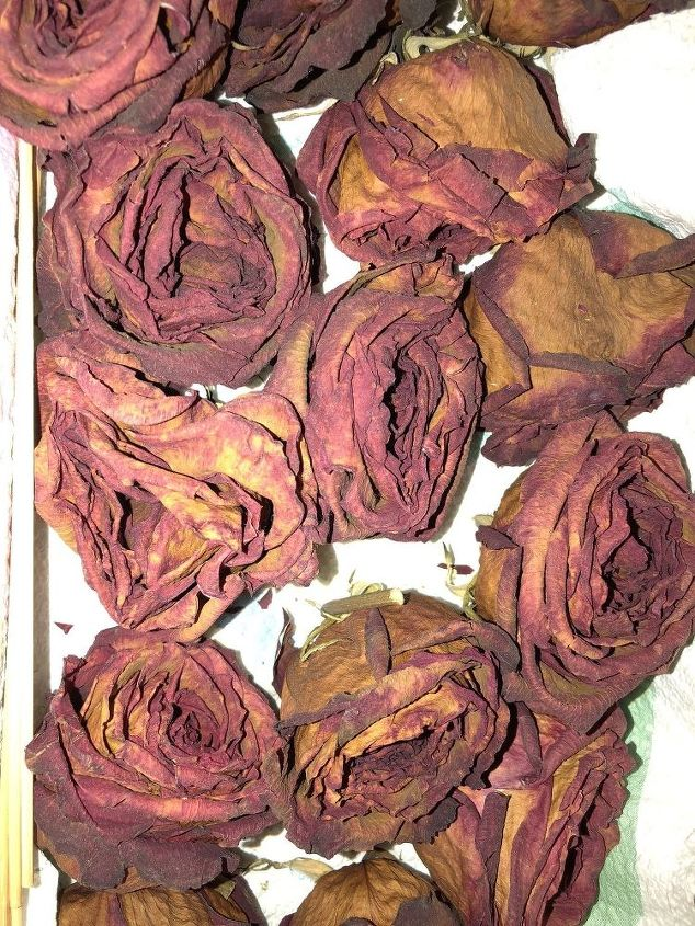 q what can i do with dried roses to protect them can i spray paint them