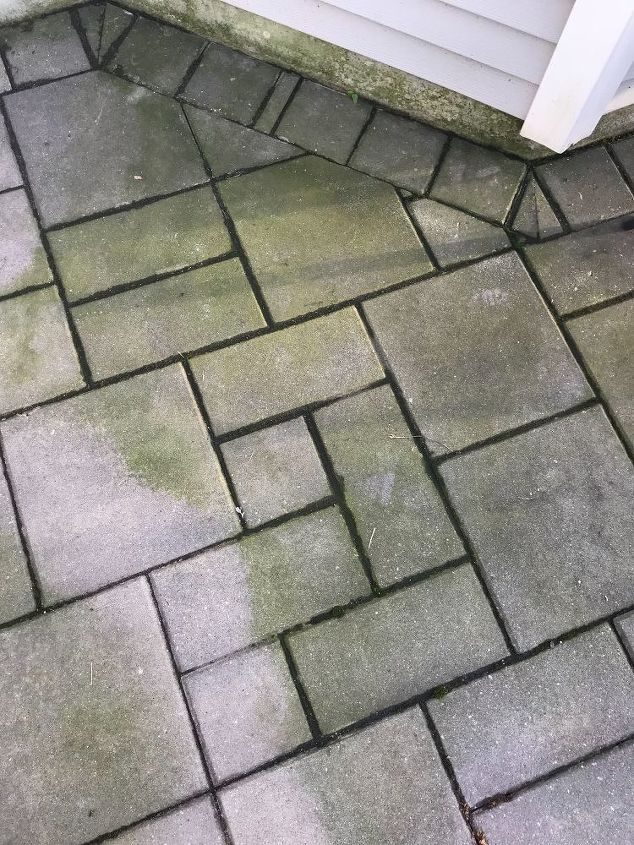 q pavers on patio have green on them