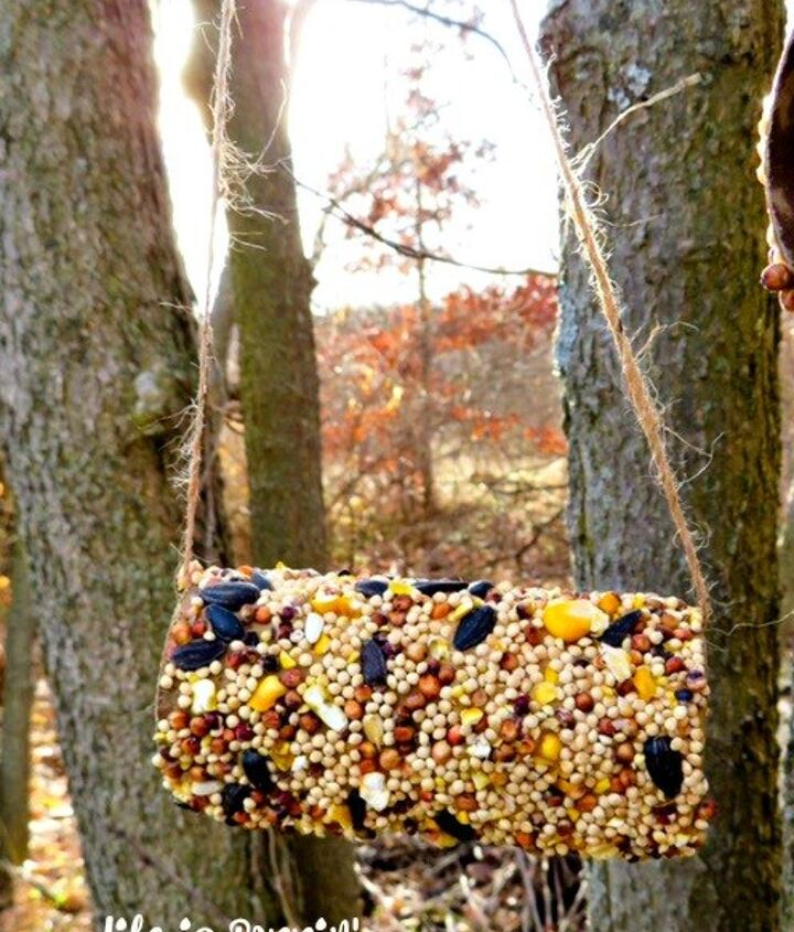 s 18 adorable bird feeders you ll want to make right now, Cover a toilet paper roll in seeds