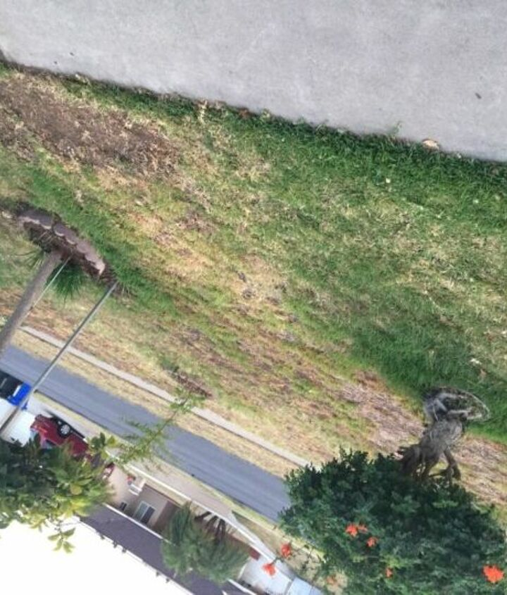 q front yard curve appeal