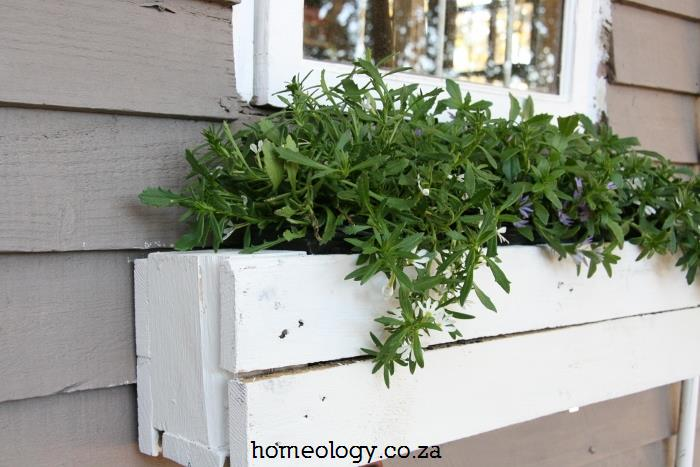 diy window box garden