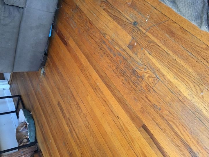 q i have a lot of scratches and marks on a hardwood floor