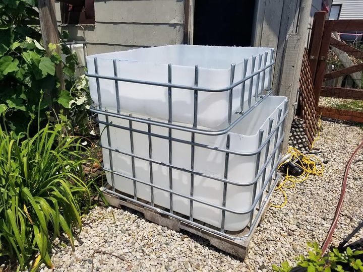 how to build a simple aquaponics system using an ibc