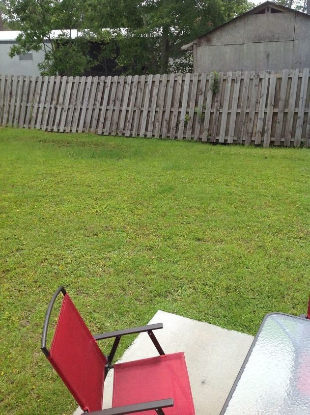 q best way to take care of wet backyard