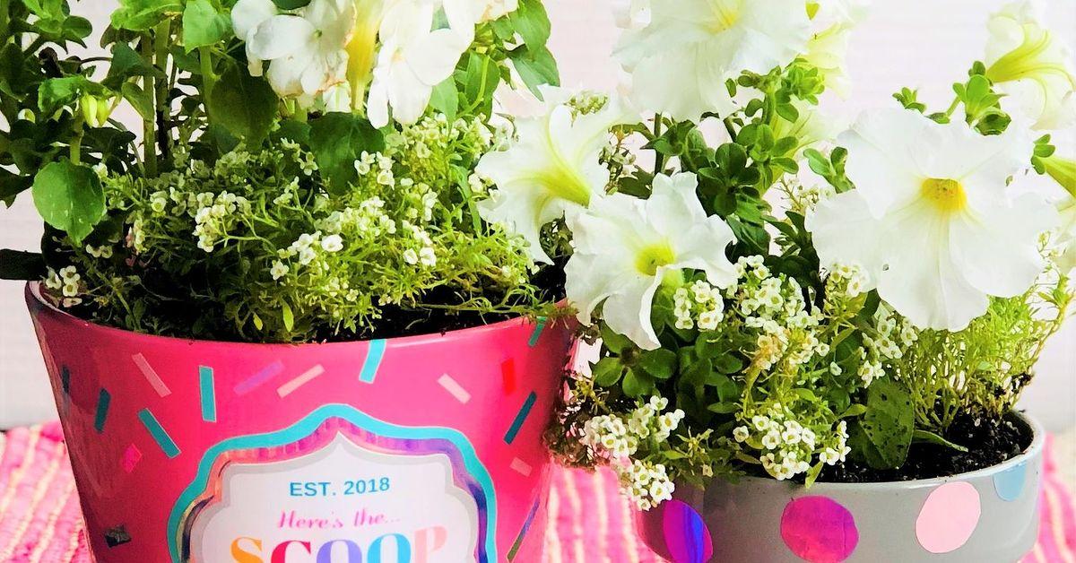 Diy Ice Cream Container Flower Pots Hometalk