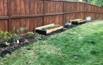 farming with a twist, A new view of the side yard