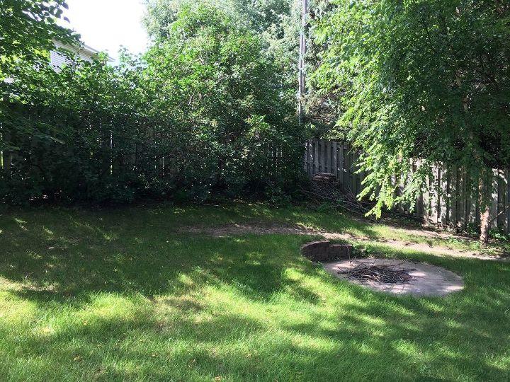 shade garden makeover, Before Shade Garden Makeover