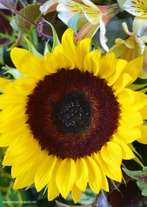 create a sunflower arrangement on a tray