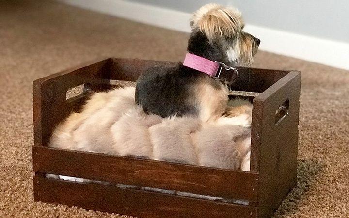 diy wood crate dog bed