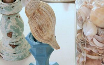 how to display a seashell