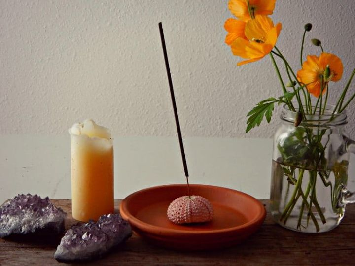 sea urchin incense holder