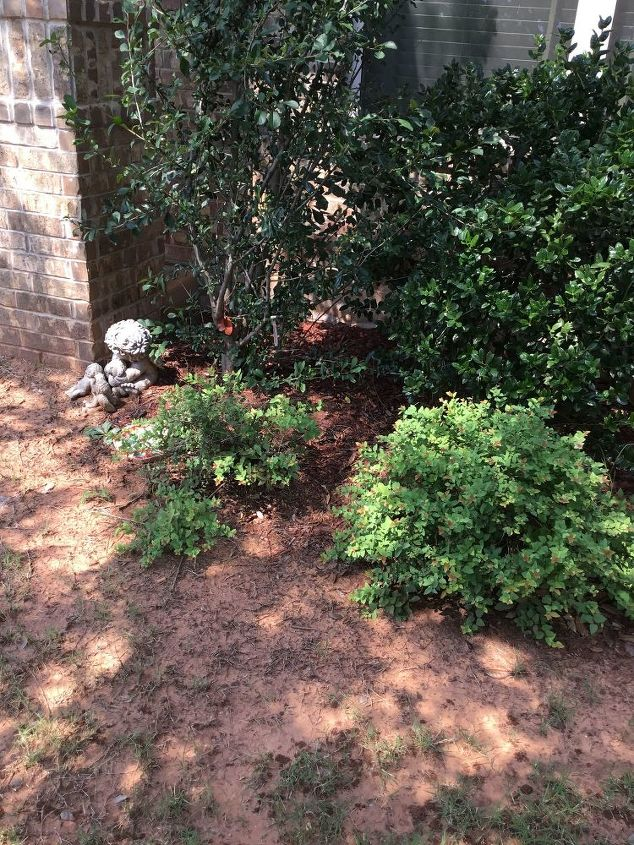 q how to makeover this flowerbed