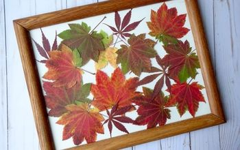 display fall color with diy pressed leaves artwork