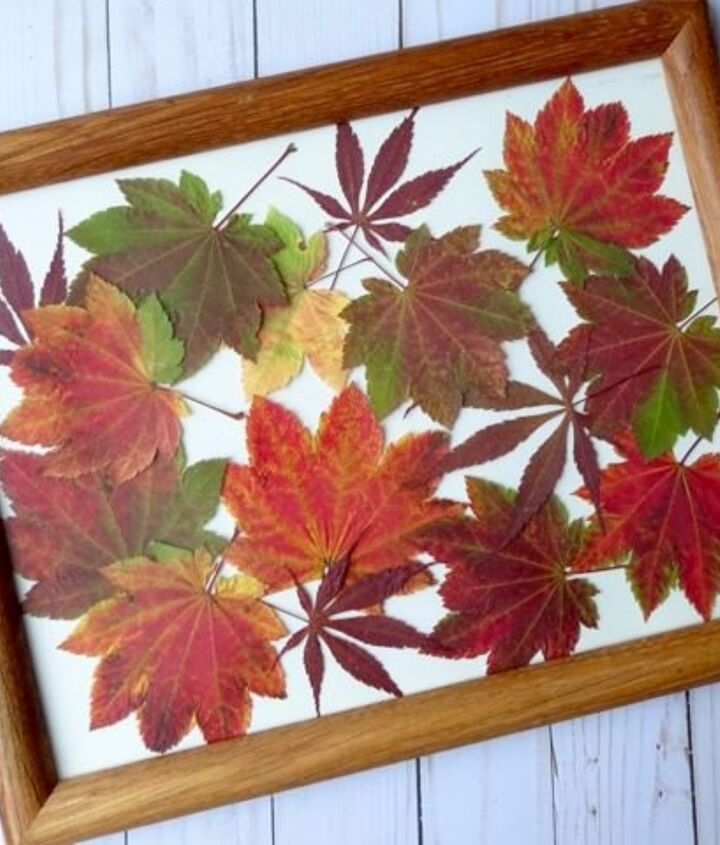 display fall color with diy pressed leaves artwork