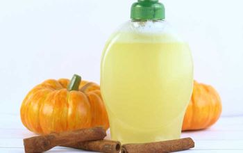 pumpkin spice liquid hand soap