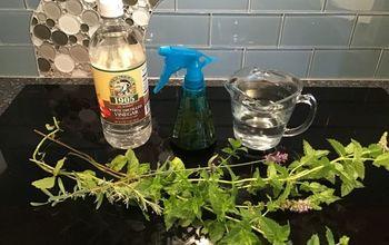 DIY Bug Repellents & Traps