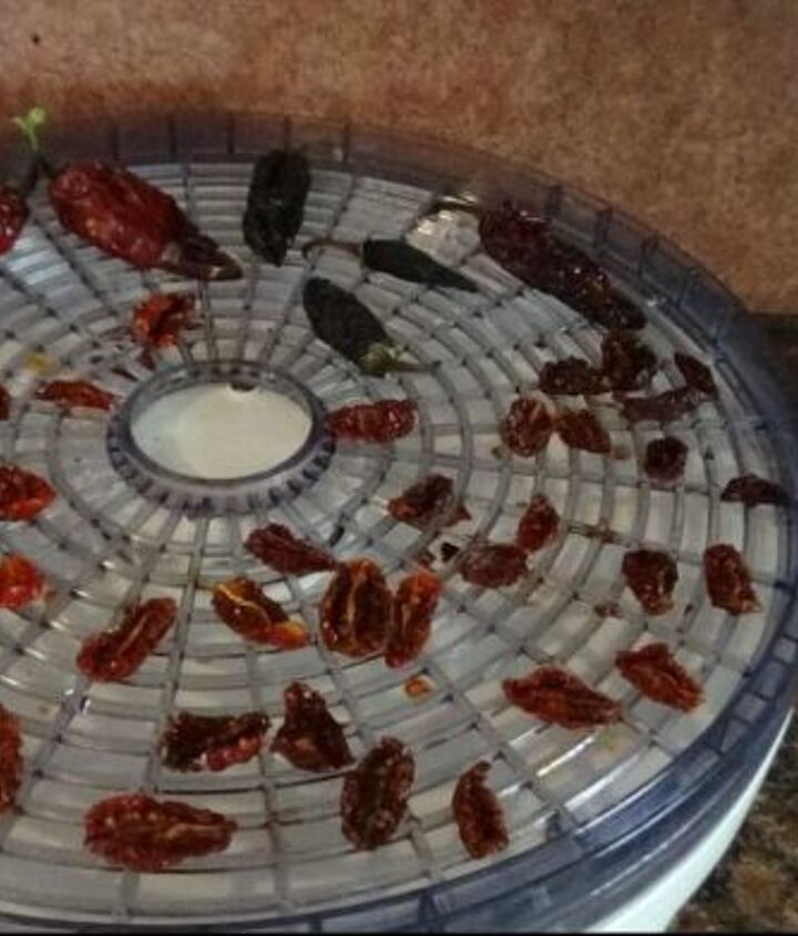 how to save dehydrate