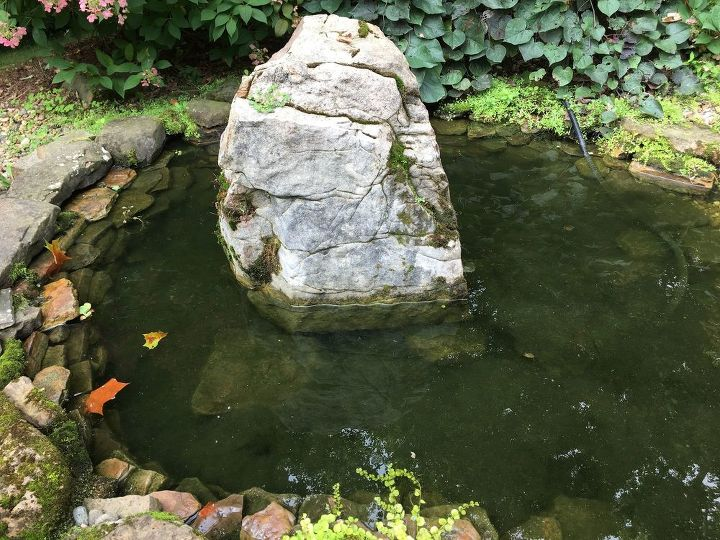 q how can i keep leaves out of koi pond