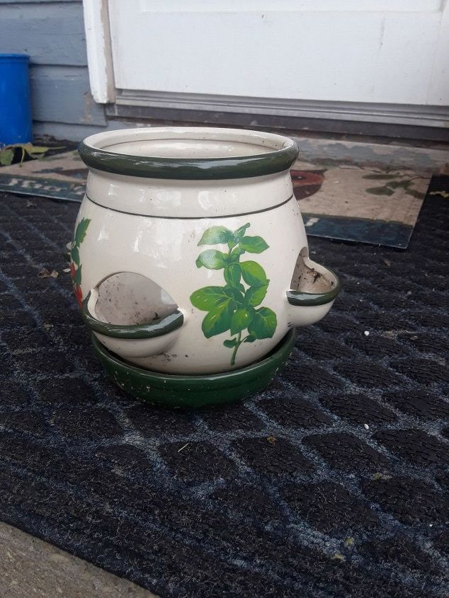 q help what do i put in this cool planter with holes around the sides