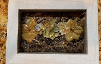 Decoupage Dried Flowers