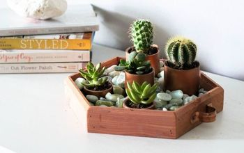 create your own succulent garden centerpiece