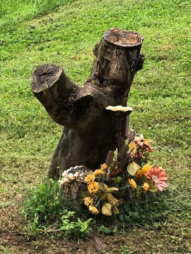 q how can i turn this oddly shaped tree stump into a birdbath